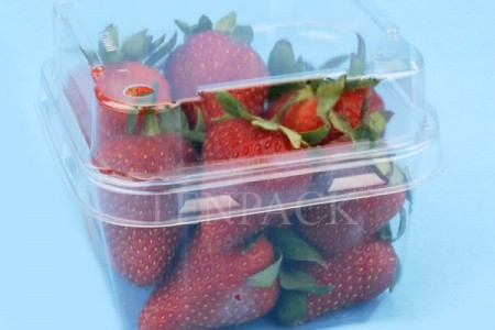 strawberry pet clamshell